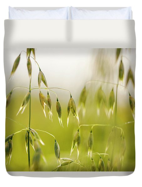Summer Oat Duvet Cover