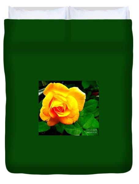 Duvet Cover featuring the photograph Summer Rose by Garnett Jaeger