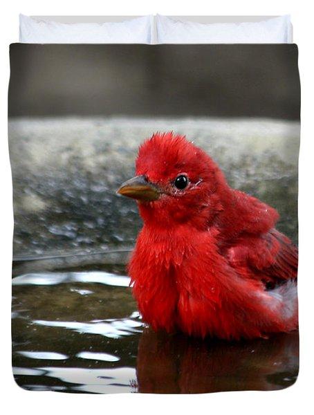 Summer Tanager In Bird Bath Duvet Cover