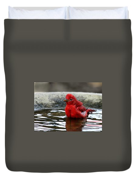 Summer Tanager In Bird Bath Duvet Cover