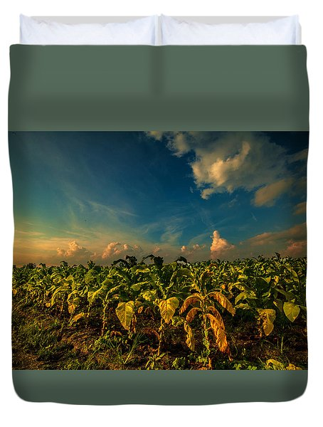 Summer Tobacco  Duvet Cover by John Harding