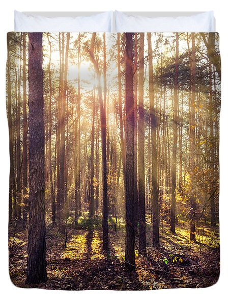 Sun Beams In The Autumn Forest Duvet Cover