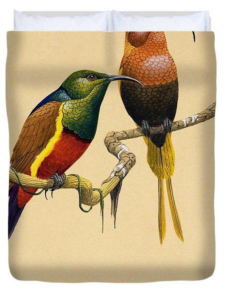 Sun Birds Duvet Cover by English School