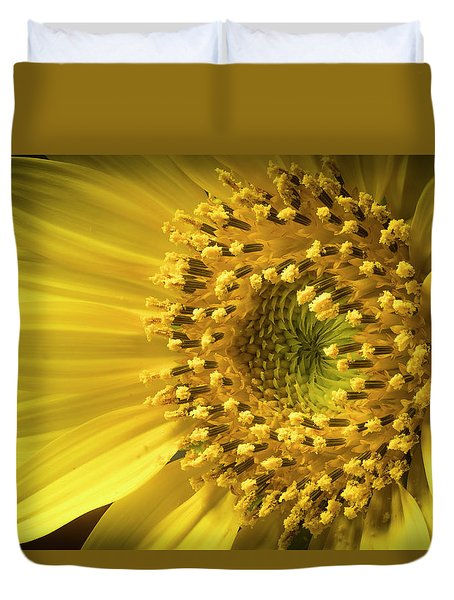Sun Burst Duvet Cover