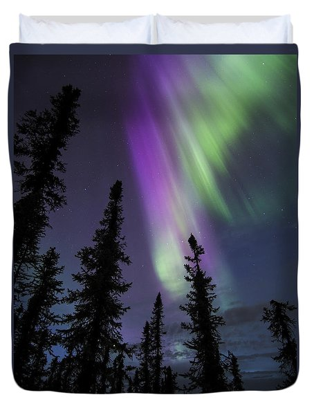 Sun-kissed Aurora Above The Spruces Duvet Cover