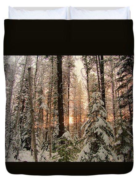 Sun Of Winter Trees Duvet Cover