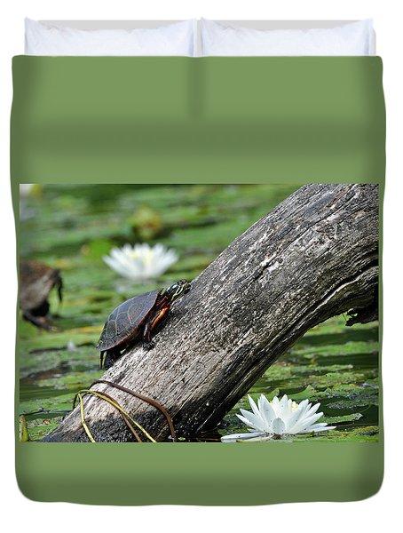Duvet Cover featuring the photograph Turtle Sunbathing by Glenn Gordon