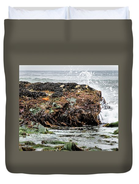 Sunbathing Starfish Duvet Cover