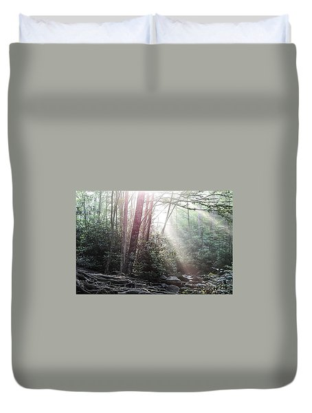 Sunbeam Streaming Into The Forest Duvet Cover