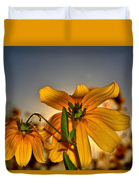 Sunblock 001 Duvet Cover by George Bostian