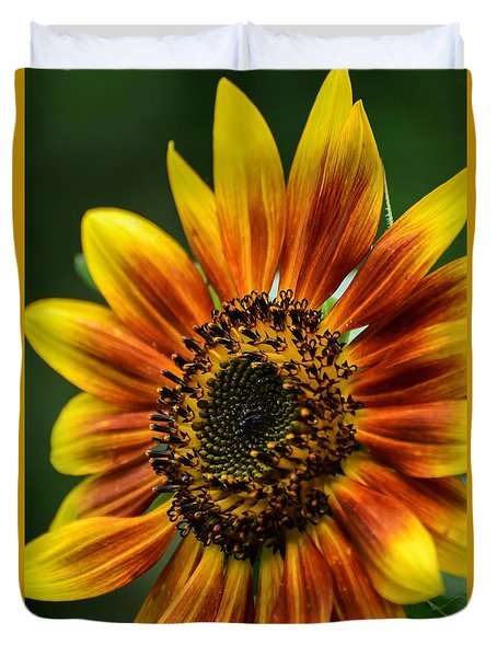 Sunburst Sunflower Duvet Cover by Debbie Green
