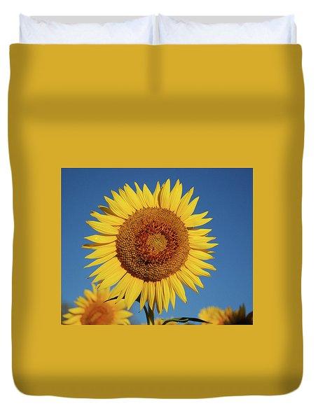 Sunflower And Blue Sky Duvet Cover by Nancy Landry