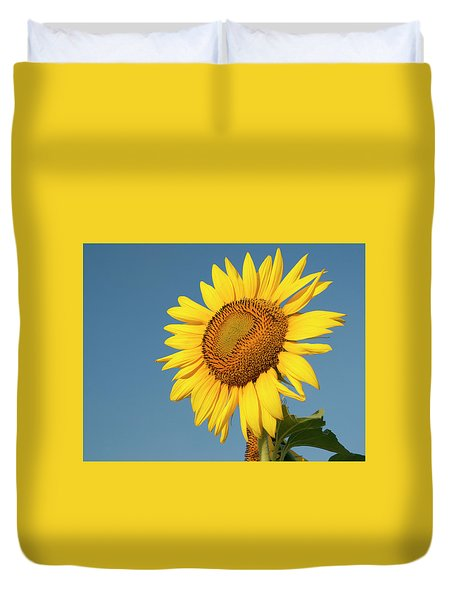 Sunflower And Blue Sky Duvet Cover