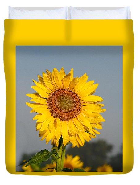 Sunflower At Attention Duvet Cover