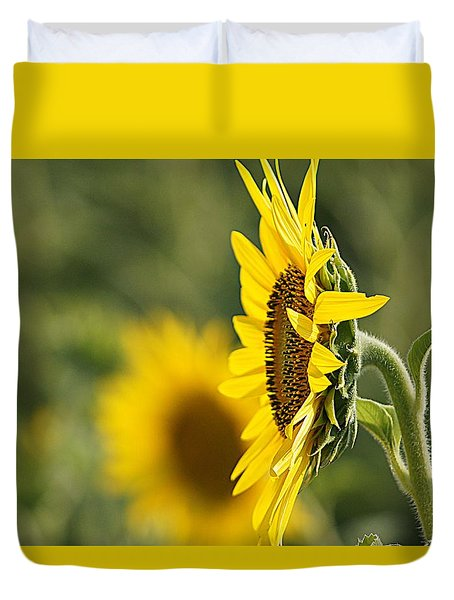 Duvet Cover featuring the photograph Sunflower Delight by Kathy Churchman
