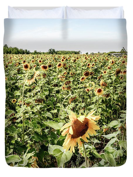 Duvet Cover featuring the photograph Sunflower Field by Alexey Stiop