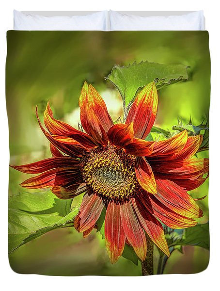 Duvet Cover featuring the photograph Sunflower #g5 by Leif Sohlman