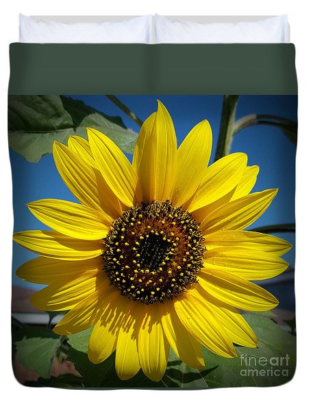 Sunflower Glow Duvet Cover