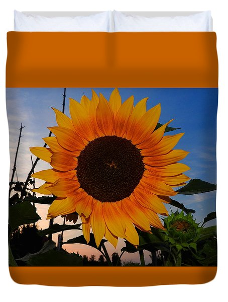 Sunflower In The Evening Duvet Cover
