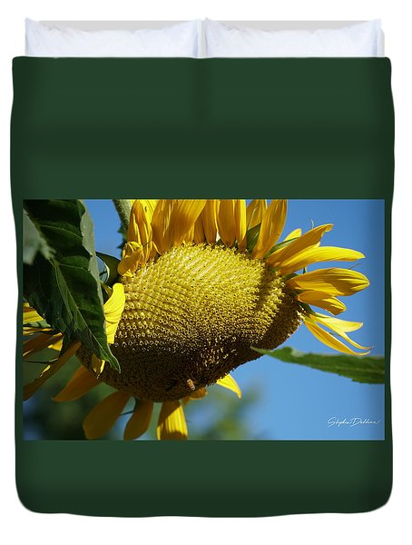 Sunflower, Mammoth With Bees Duvet Cover