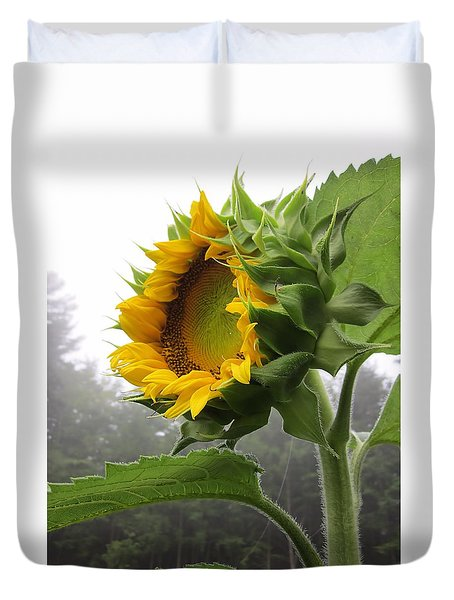 Sunflower On White Duvet Cover by MTBobbins Photography