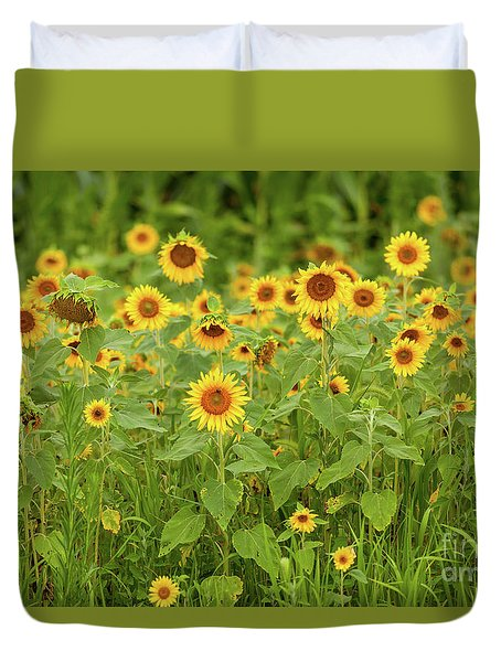 Sunflower Patch Duvet Cover