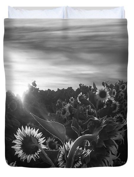 Sunflower Rise In Black And White Duvet Cover