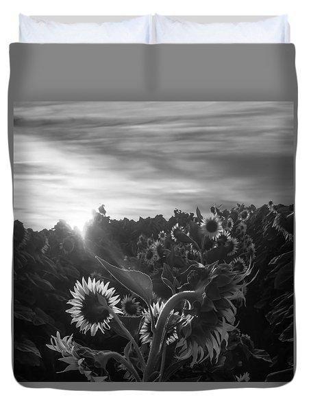 Sunflower Rise In Black And White Duvet Cover