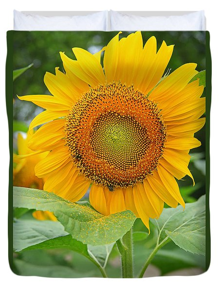Sunflower Duvet Cover by Ronald Olivier