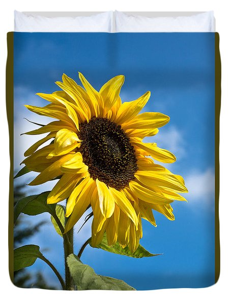Sunflower Duvet Cover by Scott Carruthers