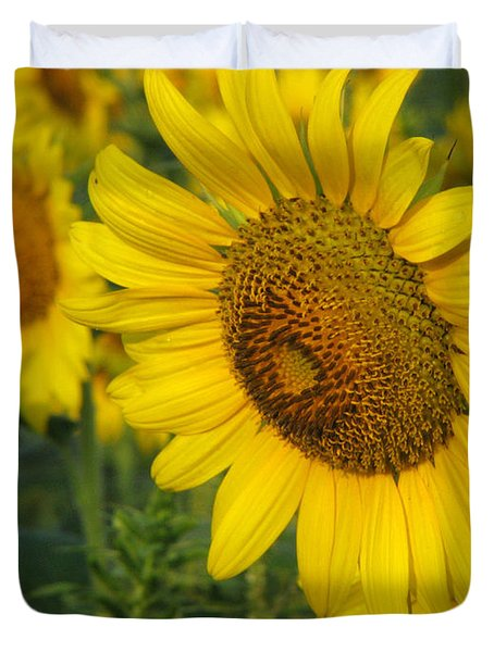 Sunflower Series Duvet Cover by Amanda Barcon
