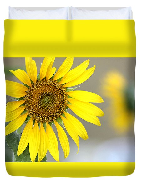 Duvet Cover featuring the photograph Sunflower by Sheila Brown