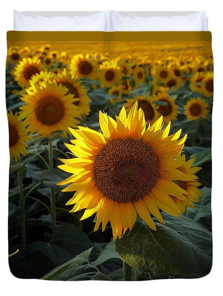 Sunflower Standout Duvet Cover