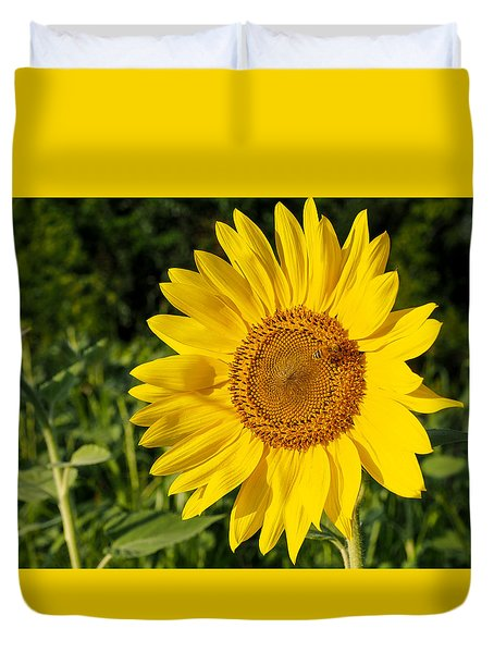 Sunflower With Bee Duvet Cover