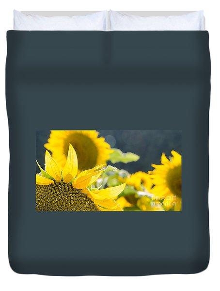 Sunflowers 14 Duvet Cover