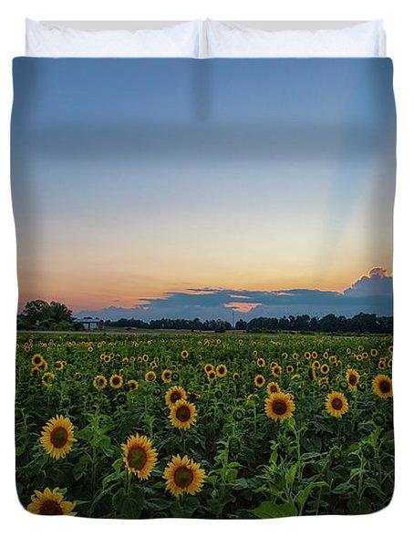Sunflowers 5 Duvet Cover