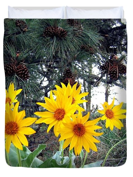 Sunflowers And Pine Cones Duvet Cover by Will Borden