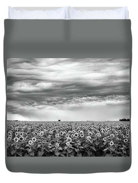 Sunflowers And Rain Showers Duvet Cover by Penny Meyers