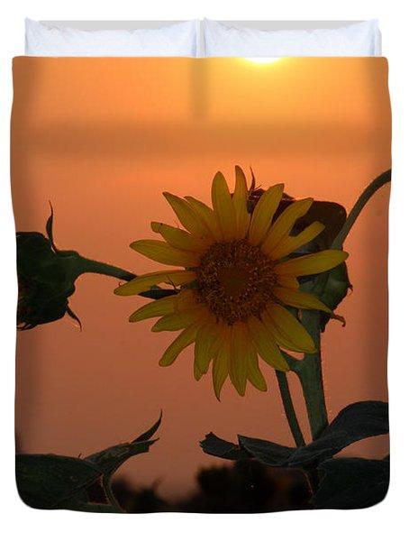 Sunflowers At Sunset Duvet Cover