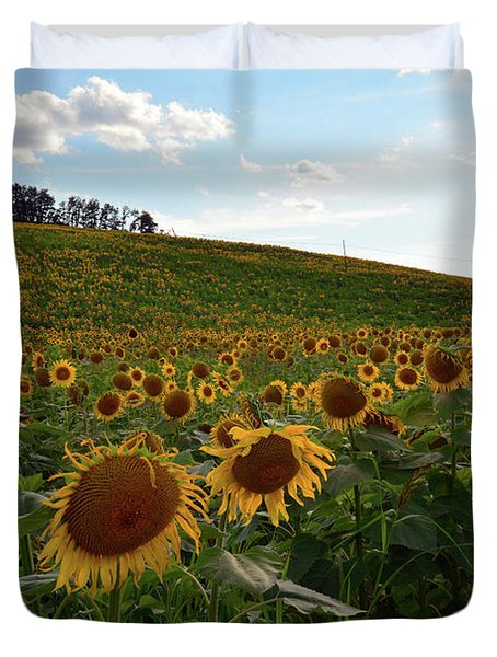Sunflowers Fields  Duvet Cover