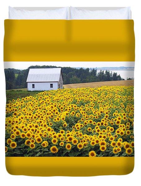 sunflowers in PEI Duvet Cover