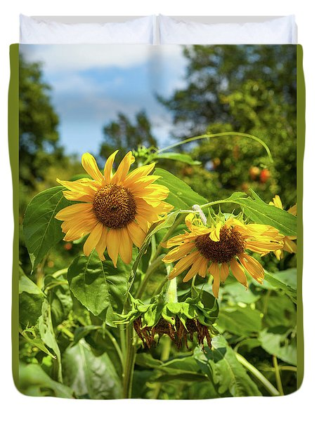 Sunflowers In Sunshine Duvet Cover