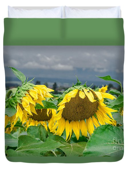 Sunflowers On A Rainy Day Duvet Cover