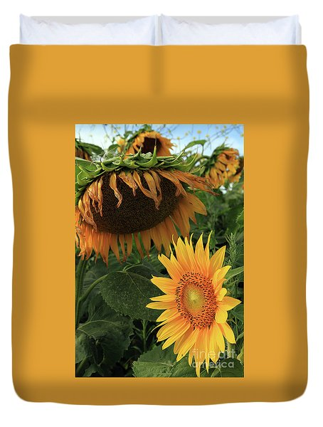 Sunflowers Past And Present Duvet Cover