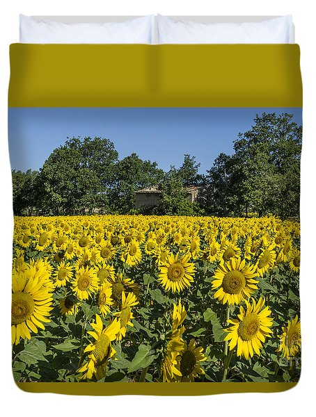 Duvet Cover featuring the photograph Sunflowers Provence  by Juergen Held