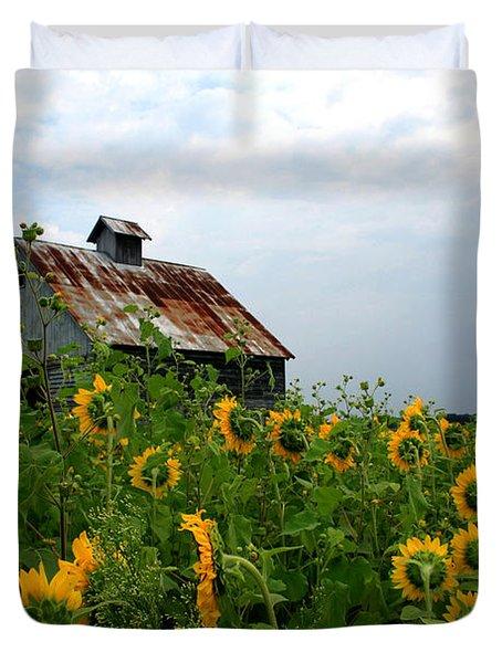 Sunflowers Rt 6 Duvet Cover
