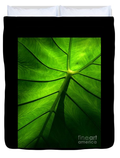 Sunglow Green Leaf Duvet Cover by Patricia L Davidson