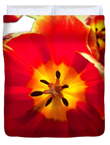 Sunkissed Tulips Duvet Cover