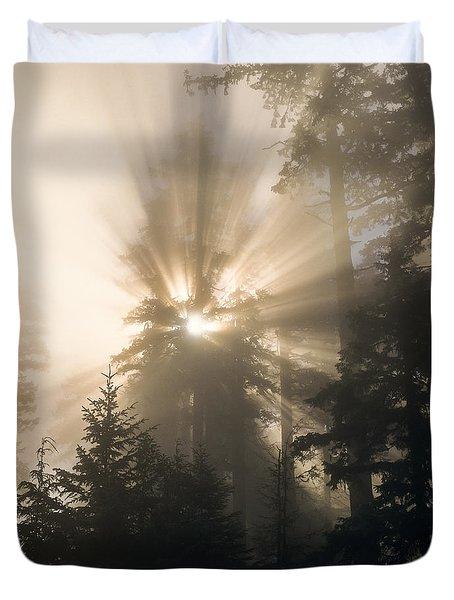 Sunlight And Fog Duvet Cover