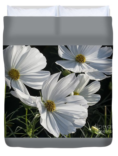 Sunlight And White Cosmos Duvet Cover